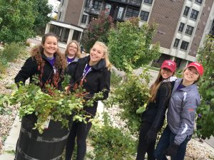 A group of volunteers pick up tree clippings and brush during Hands on Oshkosh. Over 250 UWO students showed up to lend a hand to various organizations and businesses around Oshkosh as part of the 18th semi-annual event on Saturday.