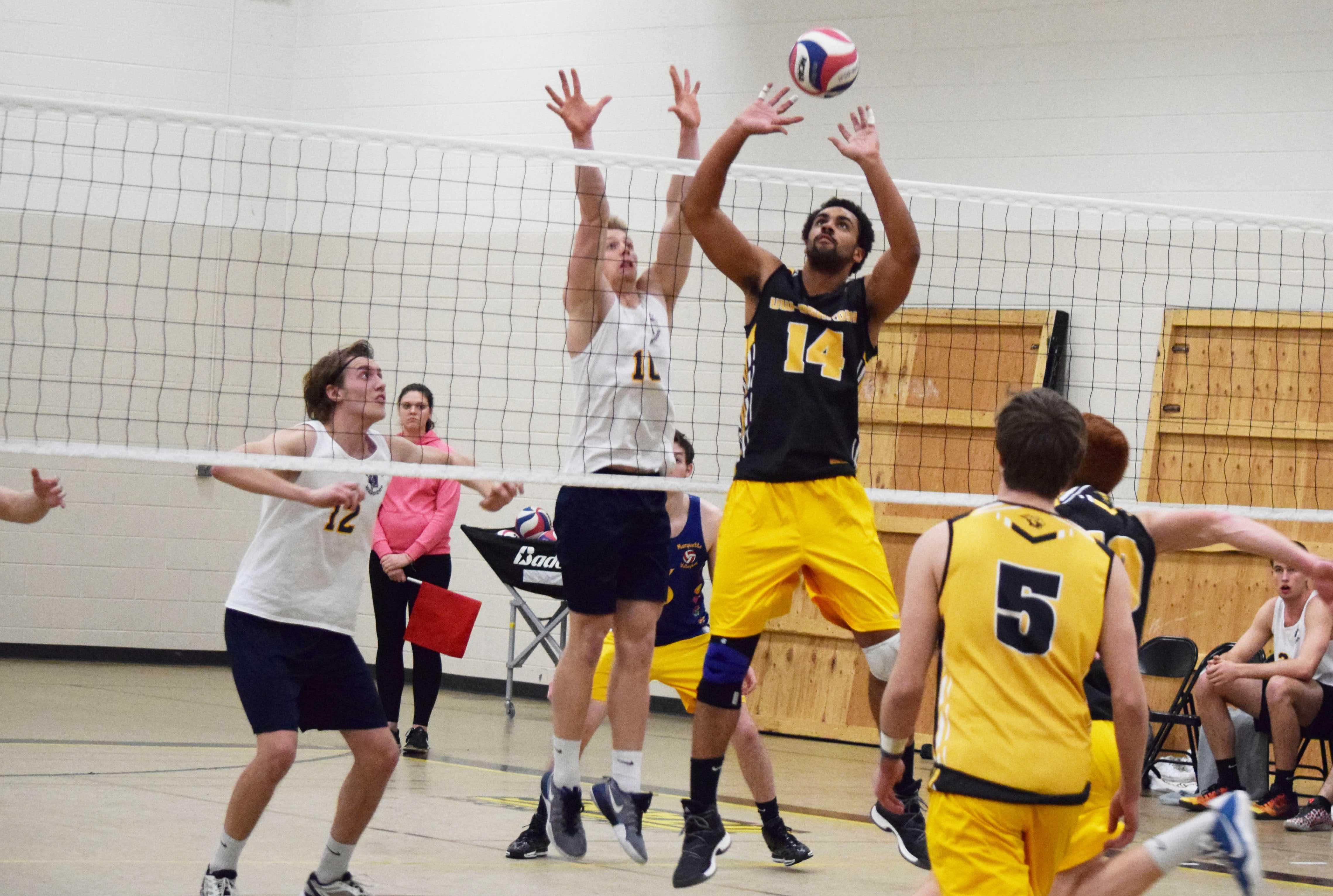 Men's volleyball sweeps La Crosse Eagles