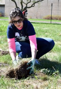 Kayla Baumann plants her prairie plant as part of Hands on Oshkosh.