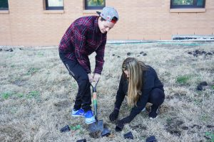 Demetra Prochaska and Emma Butry work together to get their plants in the ground.