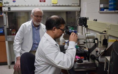 UWO professors publish research
