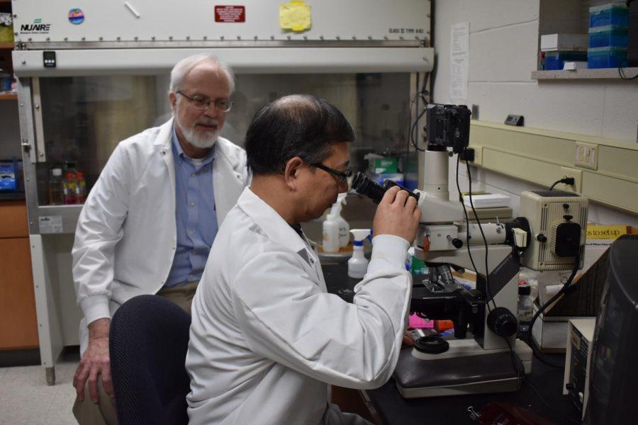 Biochemistry+professor+James+Paulson+and+organic+chemistry+professor+Linfend+Xie+analyze+their+data.