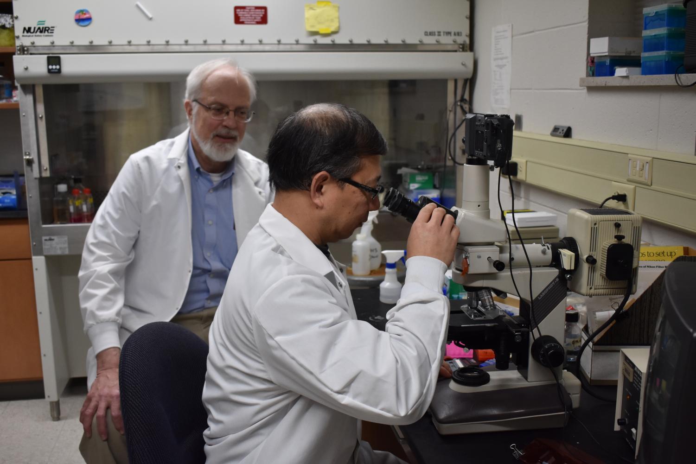 Biochemistry professor James Paulson and organic chemistry professor Linfend Xie analyze their data.