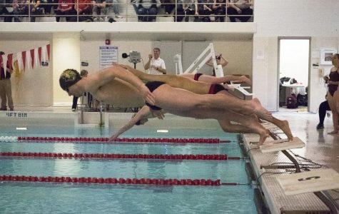 Swim and dive breaks records