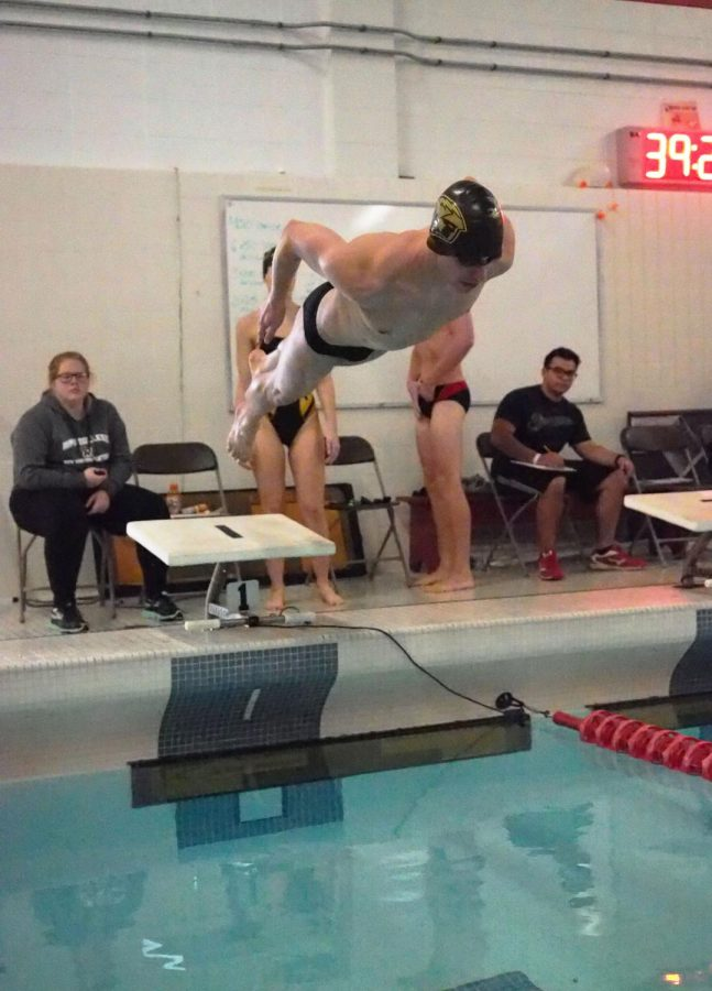 A male UWO swimmer propels off the diving board into the water against Ripon College on Feb. 15. While both swim teams did not place high enough to advance to the Division-III championship, both dive teams advanced.