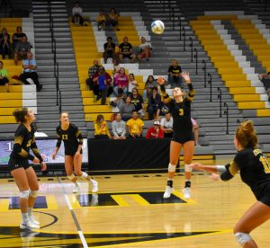 Sophomore McKenna Micech sets the ball to a teammate.