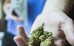 Student drug dealer tells all