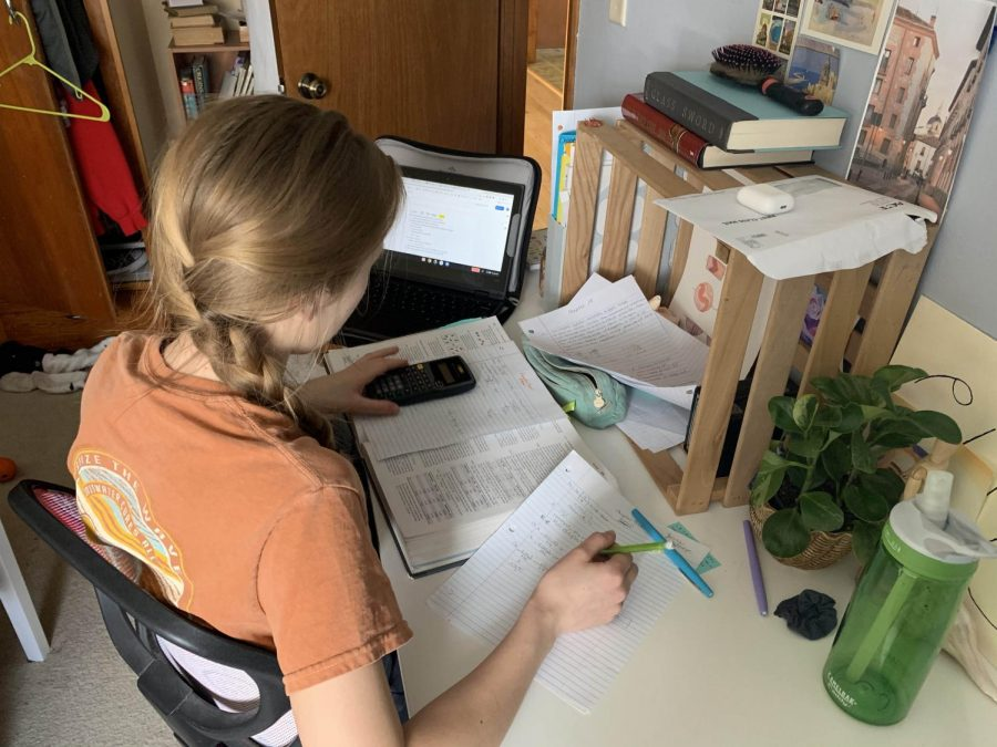 Submitted photo - K-12 students throughout Wisconsin are learning at home after school districts closed to stop the spread of the novel coronavirus.