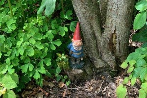 Visitors to the Paine Art Center and Gardens can search for more than 100 gnomes hidden throughout the property.