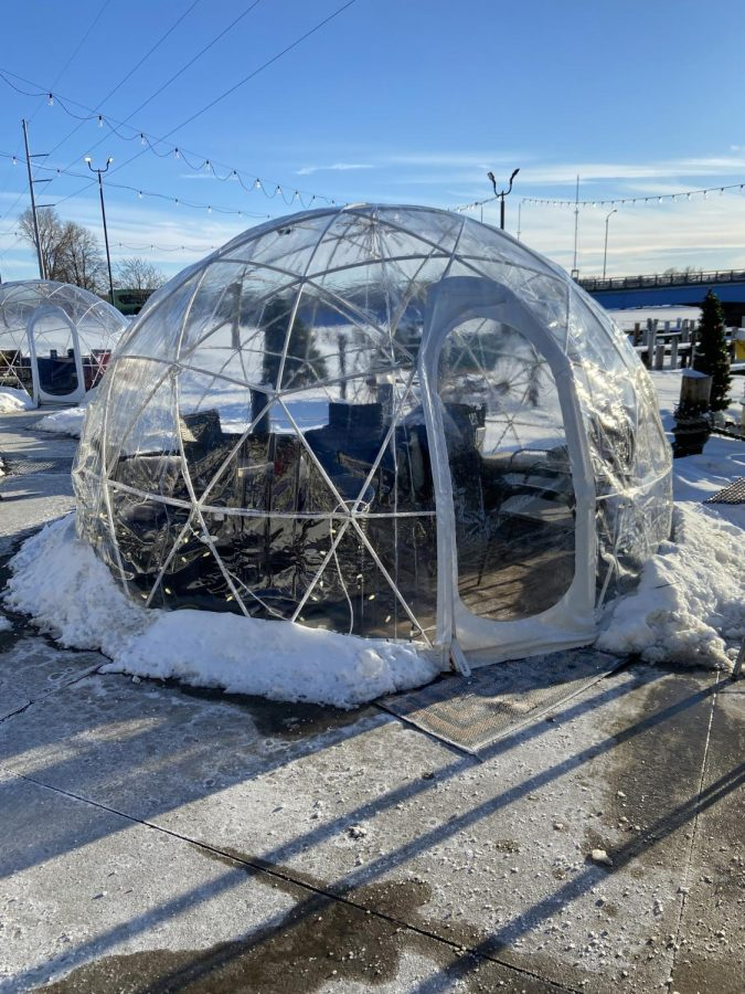 """Courtesy of Cassidy Kennedy 