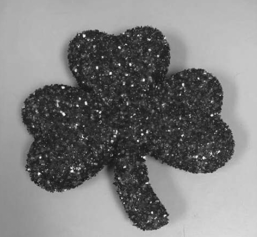 """Courtesy of Oshkosh Parks Department // Whoever finds """"Sassy"""" the shamrock first will receive a prize."""