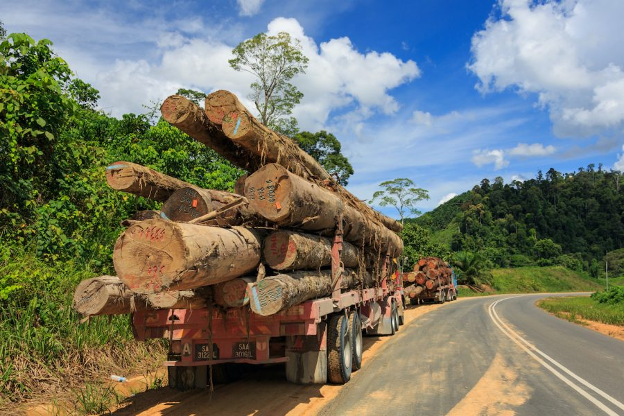 Courtesy of Wikimedia The photo is similar to a scene in the movie where the chain breaks and the logs roll out. When most people see this on the road they change lanes to avoid disaster.