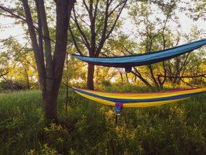 Hanging hammocks